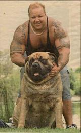 Världens tyngsta hund