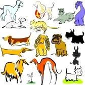 Roliga och smarta hund namn